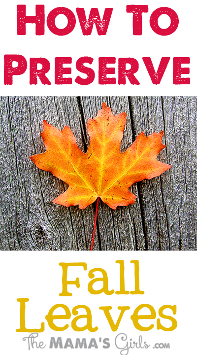 How-to-Preserve-Fall-Leaves